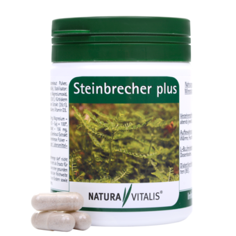 Steinbrecher plus